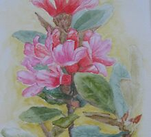 Alpine Rose by Geraldine M Leahy