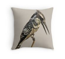 Pied Kingfisher Throw Pillow