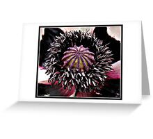 Little Cake for the Bees - Ruffled Poppy Greeting Card