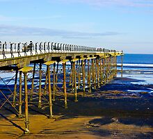 All Alone on the Pier by Trevor Kersley