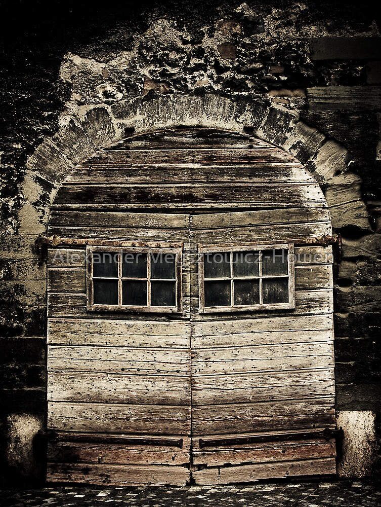 Coppet doors by Alexander Meysztowicz-Howen