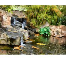 Koi Pond, Kauai Photographic Print