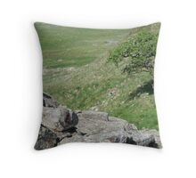 Haydrian's Wall Throw Pillow