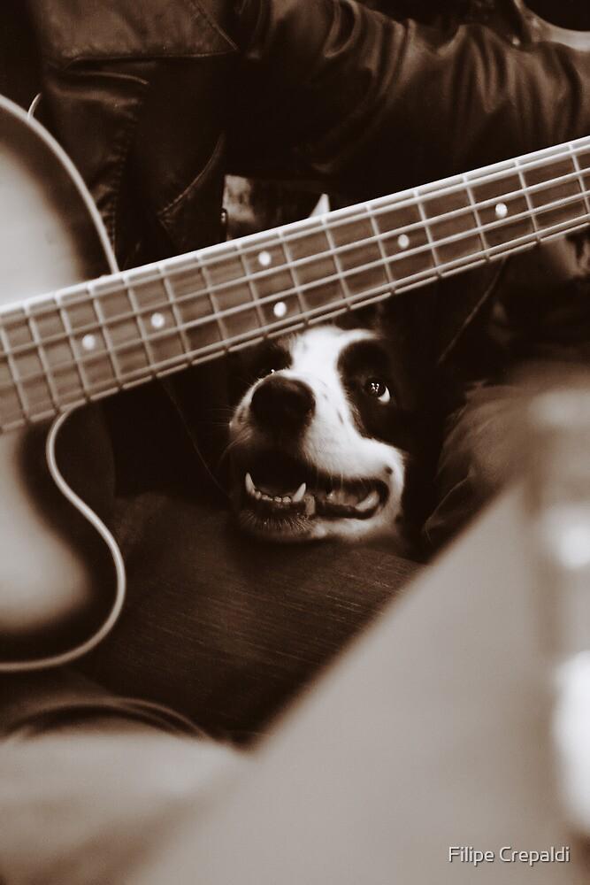 Dog & Bass by Luiz  Filipe