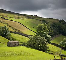 The Passing Swaledale Light by SteveMG