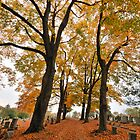 Autumn Cemetery by ApertureArtist
