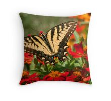 Sipping Zinnias Throw Pillow