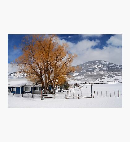 Outstanding in Orange - Snow Scene Photographic Print