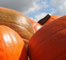 Pumpkins Sticker