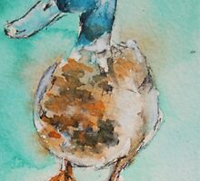 Norfolk Island duck by christine purtle