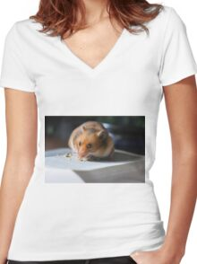 Hungry For Knowledge Women's Fitted V-Neck T-Shirt