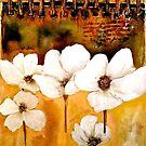 The Poppy Journals...The Five in White by © Janis Zroback