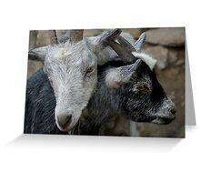 Goat Hugs Greeting Card
