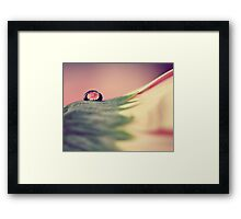 Through The Water Drop Framed Print