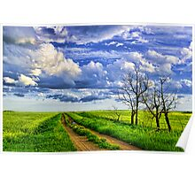 Dirt Road After the Rain Poster