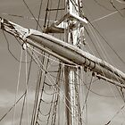 The Mast by Lynn  Gibbons