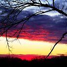 Sunset In December by Richard Skoropat