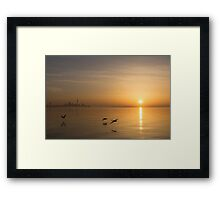 Golden Morning Flight Framed Print