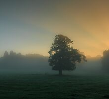 A misty sunrise by Chris Fletcher