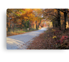 Country Fall Road Canvas Print