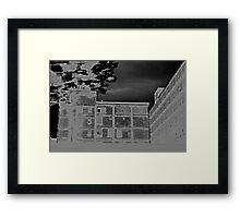 In Motion Framed Print