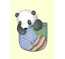Pocket Panda Photographic Print
