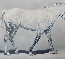 Black Shadow-Connemara Stallion by Pauline Sharp