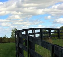 Fence and Sky by Erin Fitzgibbon