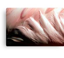 Under A Flamingo:Pink Canvas Print