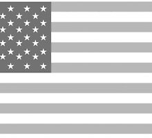 American Flag, Stars & Stripes, in Grey, USA, America, Pure & Simple by TOM HILL - Designer
