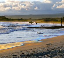 Beach Fun At Dusk On Isabela In The Galapagos by Al Bourassa