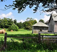 Farm - Deer Creek township by JudiLyn