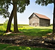 Farm - Tipton township by JudiLyn