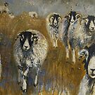Stomping Swaledales by Sue Nichol