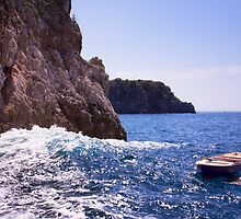 Amalfi Coast Row Boat by daphsam