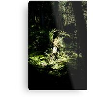 spotlighted Metal Print
