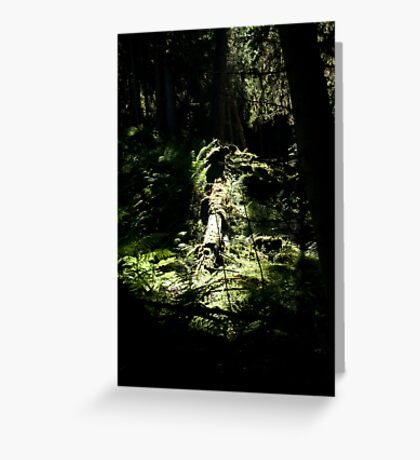 spotlighted Greeting Card