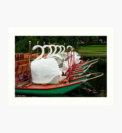 Swan Boats at Rest Art Print