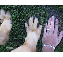 Daddys Big Paws Photographic Print