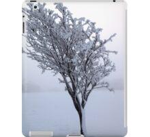 Frozen Tree, Northern Ireland iPad Case/Skin