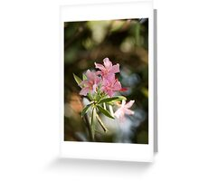 Oleander heights Greeting Card