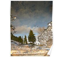 Evergreen reflection Poster