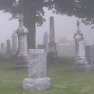 Foggy Graveyard by Christopher Clark