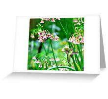Hummingbird Happiness...is Nectar Greeting Card