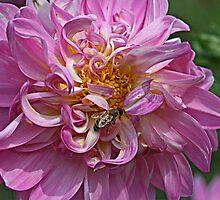 Bee Mine by Monnie Ryan