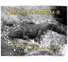 Welcome to Florida ! Poster
