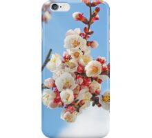 Apricot flowers iPhone Case/Skin