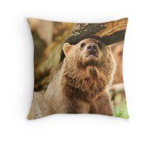 Headrest Throw Pillow