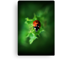 Ultra Electro Magnetic Single Ladybug Canvas Print