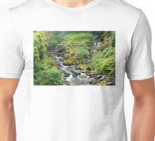Glen Lyn Gorge Unisex T-Shirt